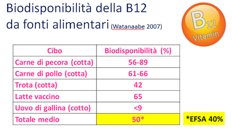 biodisponibilità vit B12