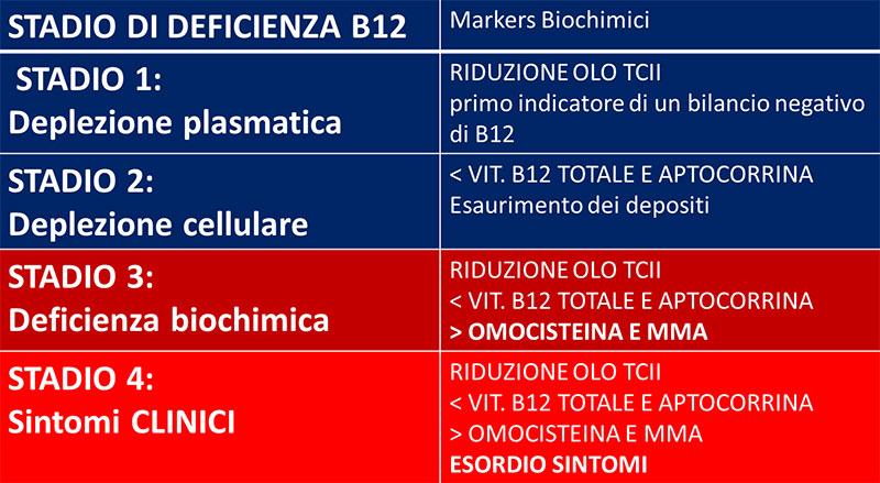 markers biochimici vit B12
