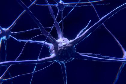 neurotrasmettitori neuroni