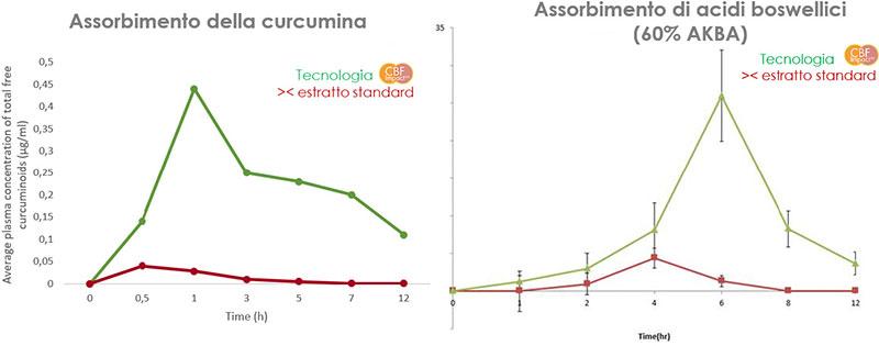 assorbimento curcuma e boswellia