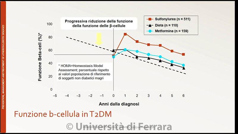 insulino-resistenza 9